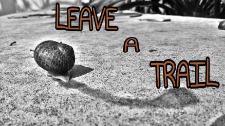 trailleave.jpg