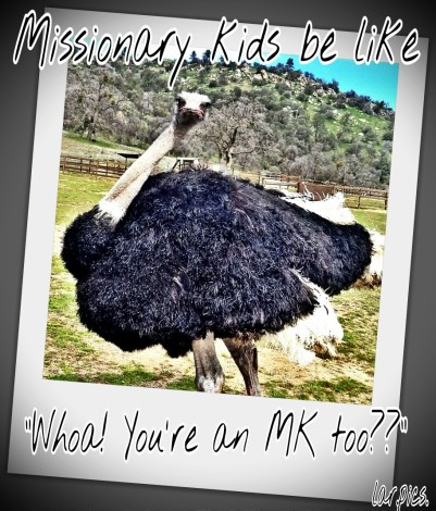 mk too.jpg