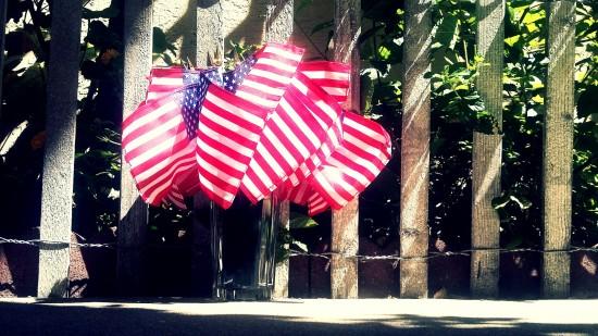 flag4th.jpg