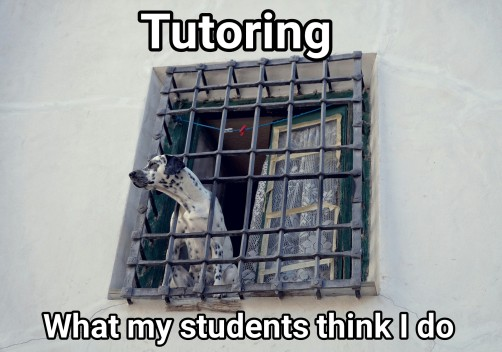 tutoringstudents