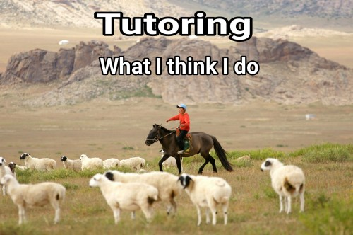 tutoringthink